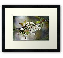 Textured Blossom Framed Print
