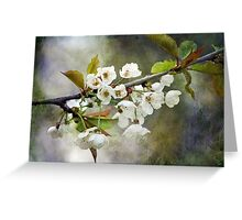 Textured Blossom Greeting Card