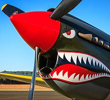 Smile! P-40 by Michael Clarke