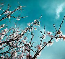 Ode to Heaven by Apostolos Mantzouranis