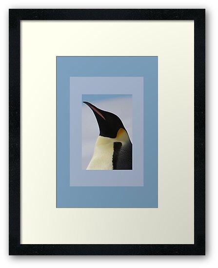 Penguin Portrait by Catherine Hamilton-Veal  ©