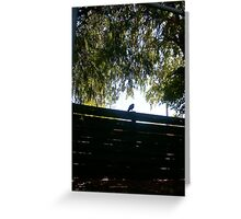Vaguely Psychic Crow Threatens The Truth - 01 04 13 Greeting Card