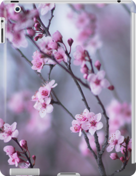 Pink Cherry Blossoms by Arteffecting