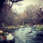 Bridge at oak creek canyon  by Anelle121314