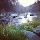 Oak creek by Anelle121314