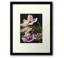 Playful Poppies Framed Print