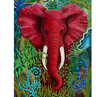 The Big Red Elephant Photographic Print