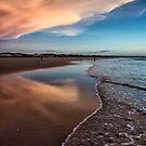 Beauty of the Beach by Mieke Boynton