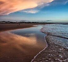 Beauty of the Beach by Mieke Boynton