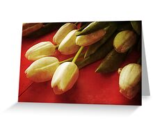 White Tulips over Red Greeting Card