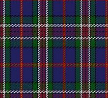 01511 Twempy Fashion Tartan Fabric Print Iphone Case by Detnecs2013