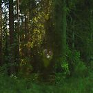 But For The Love Of Forests by ArtOfE