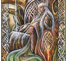 King of Mirkwood by jankolas