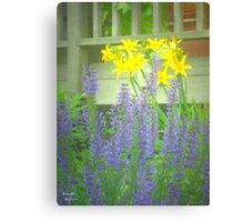Easter Lupine Canvas Print