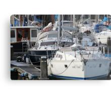The Recreational Harbor II Metal Print