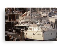 The Recreational Harbor I Metal Print