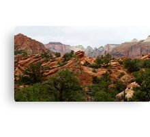 Zion National Park,Utah USA Canvas Print