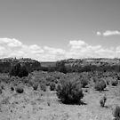 Black and White Kodachrome State Park,Utah,USA by Anthony & Nancy  Leake