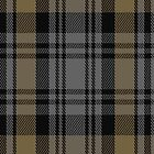 01513 Tyndrum District Tartan Fabric Print Iphone Case by Detnecs2013