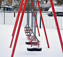 Swings in the Snow by David King