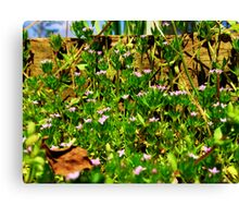 The World of Small Canvas Print