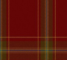01531 Alegre-Wood Tartan Fabric Print Iphone Case by Detnecs2013