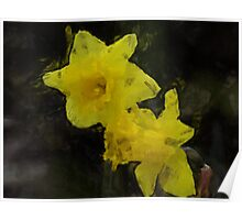Yellow Daffodils Floral Impressionist Painting Poster Poster