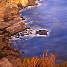 Great Australian Bight by Pam Wilkie