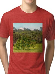 Fruit tree on a rural property Tri-blend T-Shirt