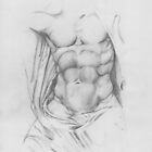 Study: Torso of Zeus by Aakheperure