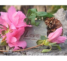 Love for Nature Photographic Print