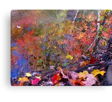 Energetic waters Canvas Print