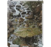 Tranquil Waterfall  iPad Case/Skin