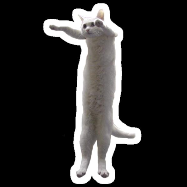 Long Cat by adamrwhite