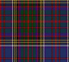 01566 Anderson (W L Anderson, Stirling) Tartan Fabric Print Iphone Case by Detnecs2013