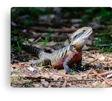 My name is Spike Canvas Print