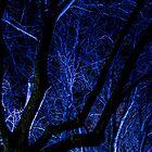 Ghostly Blue by LadyFran