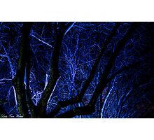Ghostly Blue Photographic Print