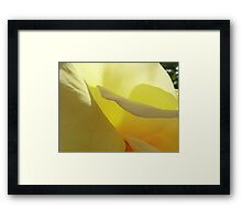 The Yellow Petal Mountains  Framed Print