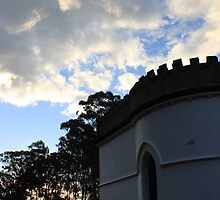 Turret in the park - Greystanes (Sydney) 2010 by jackibrown