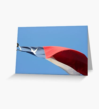 TEXAS! Greeting Card