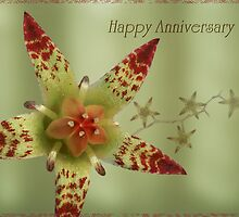 Happy anniversary by Robyn Selem