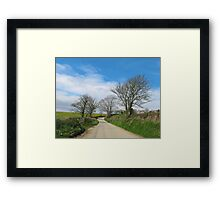 English Country Road in Cornwall Framed Print