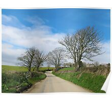 English Country Road in Cornwall Poster
