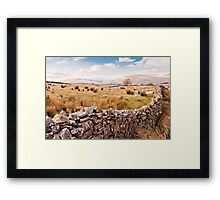 A Dales View Framed Print