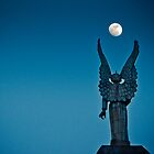 Moonlight Night by Michael Vesia