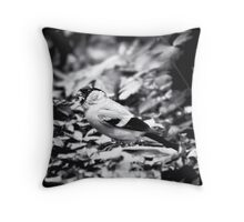 sparrow (003)  Throw Pillow