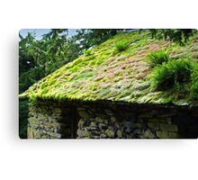 Fluffy Roof, Lake District Barn Canvas Print