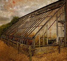 Green house waiting for repair. by Karen  Betts