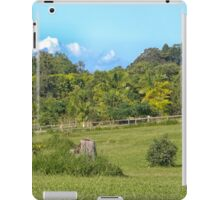 Beautiful Rural Property iPad Case/Skin
